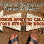 Are novels always fiction
